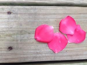petals on deck